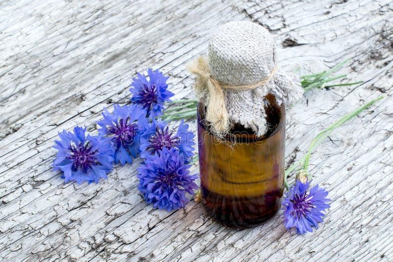 Medicinalväxtblåklint (Centaureacyanus) och läkemedel royaltyfri bild