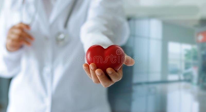 Medicindoktor som rymmer röd hjärtaform i handen, medicinsk technol arkivfoto