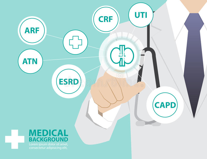 Medicine doctor working with modern virtual technology, hand to. Uching interface as medical concept Kidney, kidney failure, CAPD, ATN, ESRD, CRF, ARF, UTI royalty free illustration