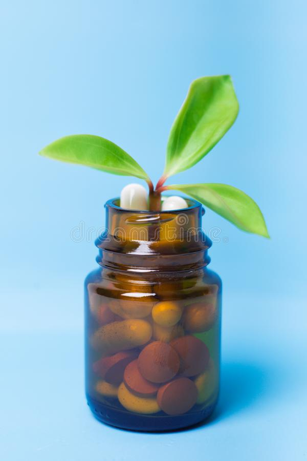 Herbal pills with medical plant. Natural tradicional medicine concept royalty free stock photos