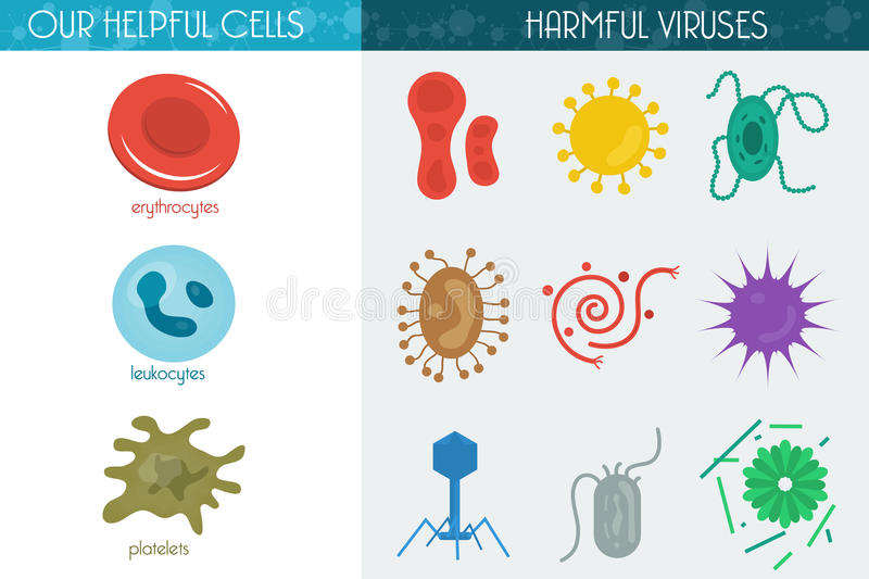 Medicine icon cell. Vector Illustration Icon Set Helpful and Harmful Cells Virus Blood Cells and bacteria vector illustration