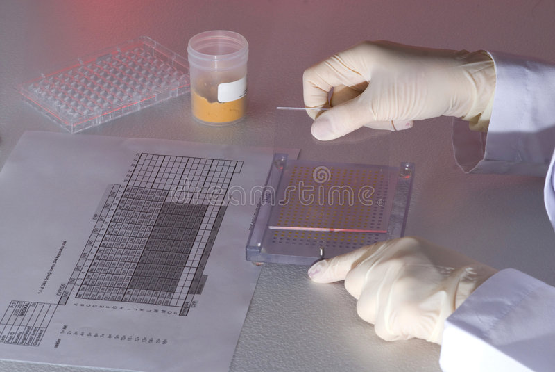 Download Medicine laboratory stock photo. Image of laboratory, investigation - 9042074
