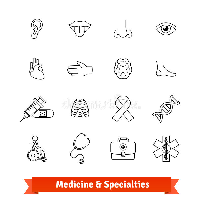 Medicine and medical specialties. Icons set. Medicine and medical specialties. Thin line art icons set. Human organs, diagnostic equipment, ambulance. Linear royalty free illustration