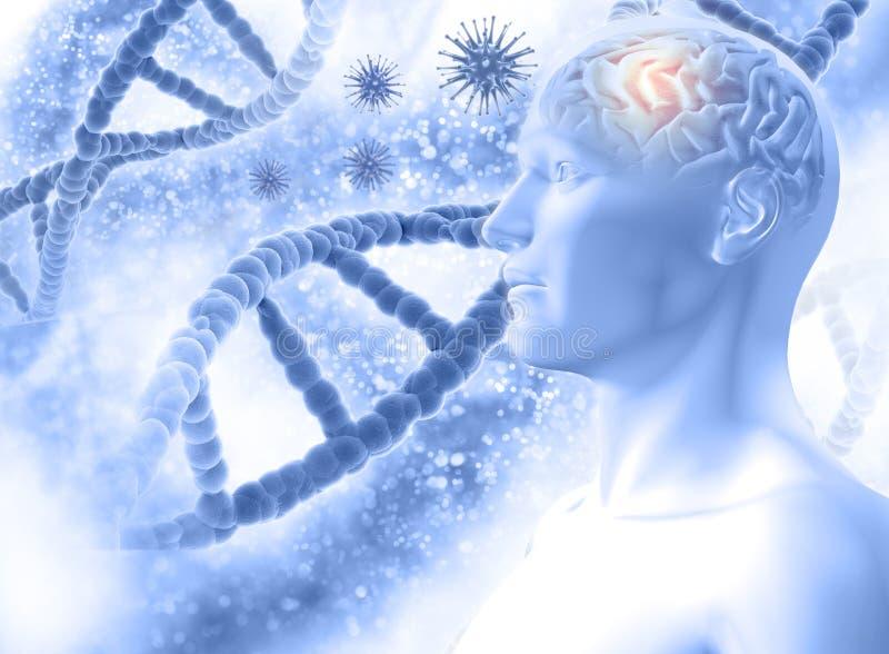 medicinsk bakgrund 3D med det manliga diagramet med hjärn- och viruscellen stock illustrationer