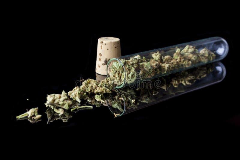 Medicinsk cannabis spillde från provröret på svart från sida royaltyfri foto