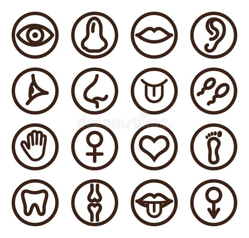 Medicinsk linje symbolsuppsättning för rengöringsduk och mobil royaltyfri illustrationer