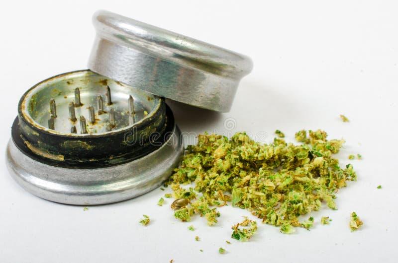 Medicinsk marijuana som malas upp och, ordnar till för att rulla Med en stålknopprackare royaltyfri bild