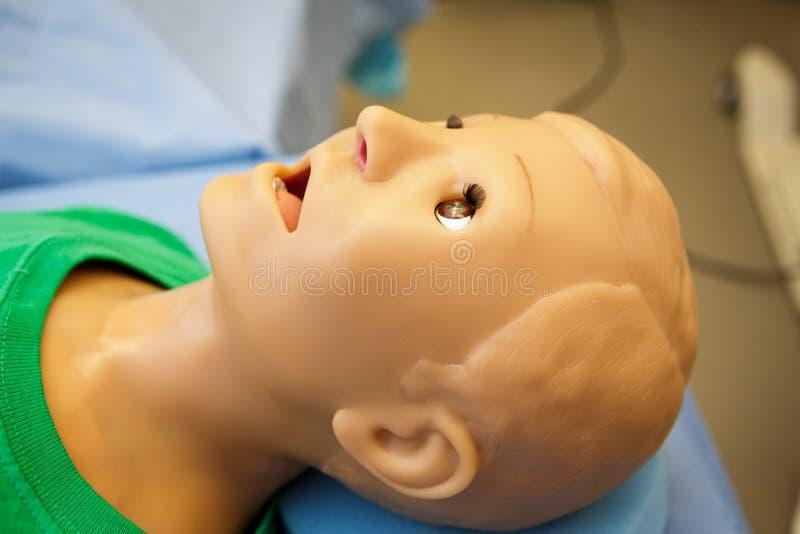Medicinsk skyltdocka fotografering för bildbyråer