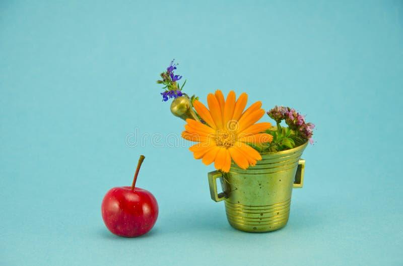 Medicinska blommor, rött äpple och tappningmässingsmortel arkivfoto