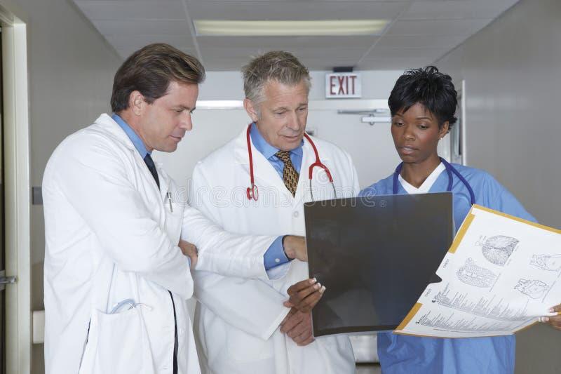 Medicinska professionell som ser röntgenstrålen royaltyfri foto