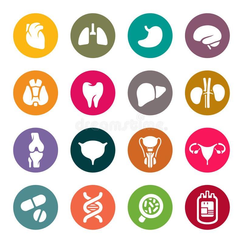 Medicinska symboler. Mänskliga organ royaltyfri illustrationer