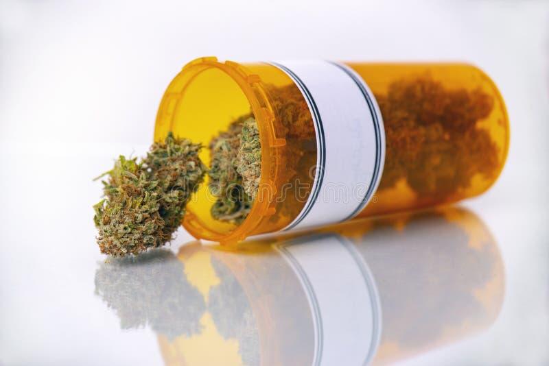 Medicinskt marijuanabegrepp med torra cannabisknoppar som isoleras på whi royaltyfri bild