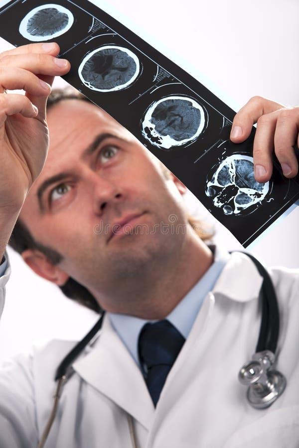 Medico che analizza un'esplorazione di CT immagini stock