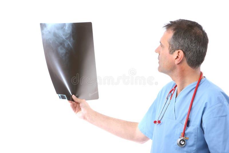 Medico che esamina i raggi X fotografia stock