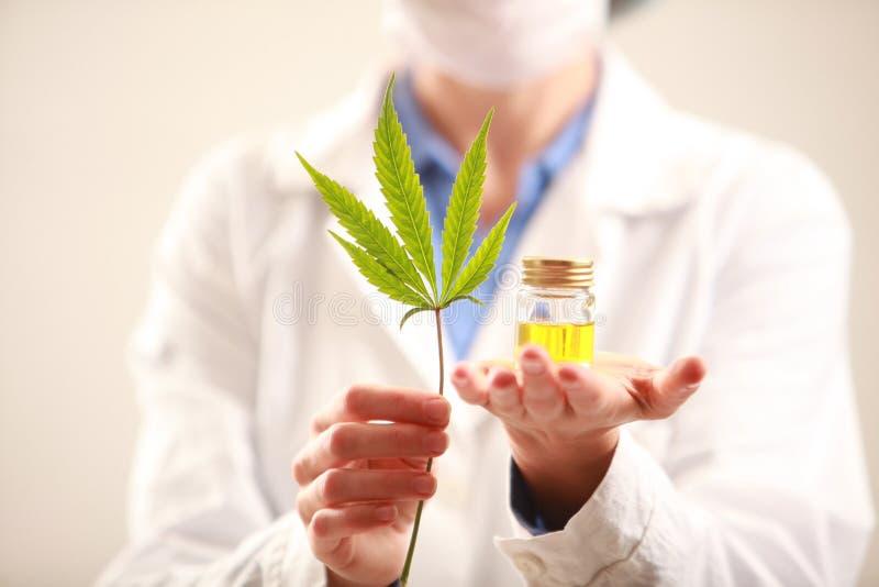 Medico della donna che tiene una cannabis copre di foglie e lubrifica Medicina alternativa immagine stock libera da diritti