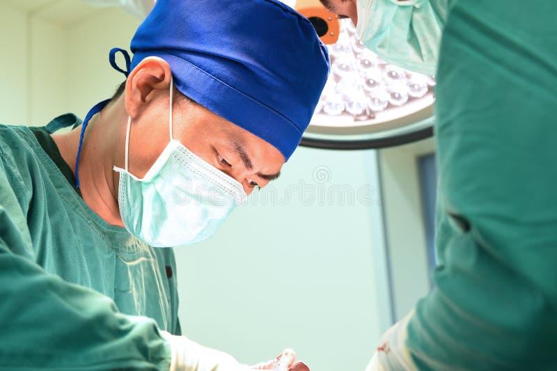 medico di due veterinari che lavora nella sala operatoria fotografie stock libere da diritti