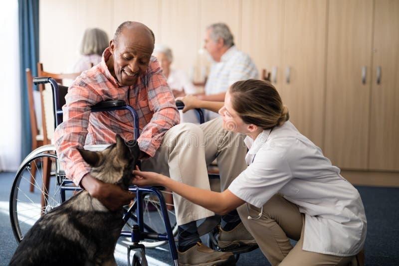 Medico femminile allegro che si inginocchia dall'uomo senior disabile che segna cucciolo fotografia stock libera da diritti