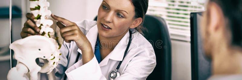 Medico femminile che indica su un osso fotografia stock libera da diritti