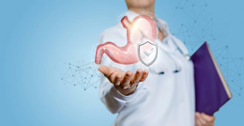 Medico mostra che lo stomaco umano è protetto fotografie stock libere da diritti
