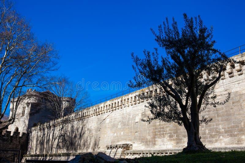 Medieval built Avignon city stone wall stock image