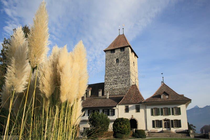 Castle of Thun stock photos