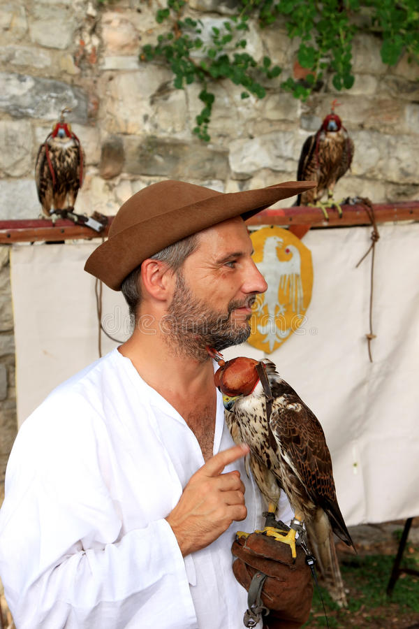 Medieval dressed falconer with hooded falcon royalty free stock image