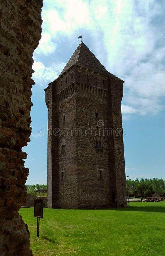 Medieval gotic tower royalty free stock image