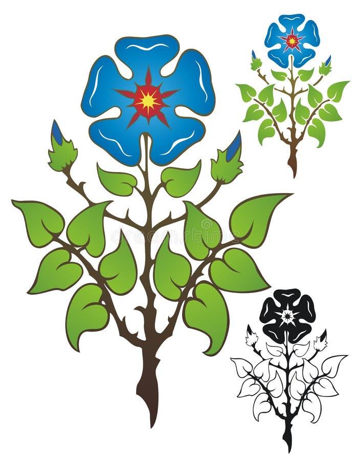 Medieval Rose stock photos