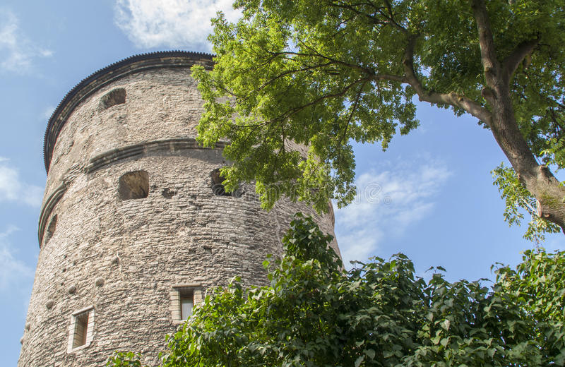 Medieval tower in Tallin. Mighty medieval tower in Tallin, Estonia stock photos