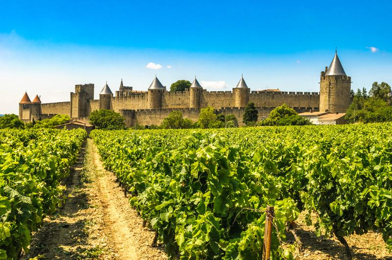 Medieval town of Carcassonne and vineyards, France.  royalty free stock photos