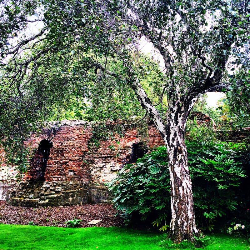 Medievale storico del palazzo di Eltham dei giardini fotografie stock libere da diritti