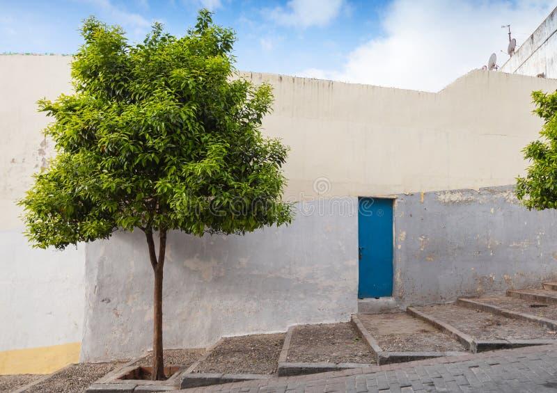 Medina gatasikt, Tangier, Marocko fotografering för bildbyråer