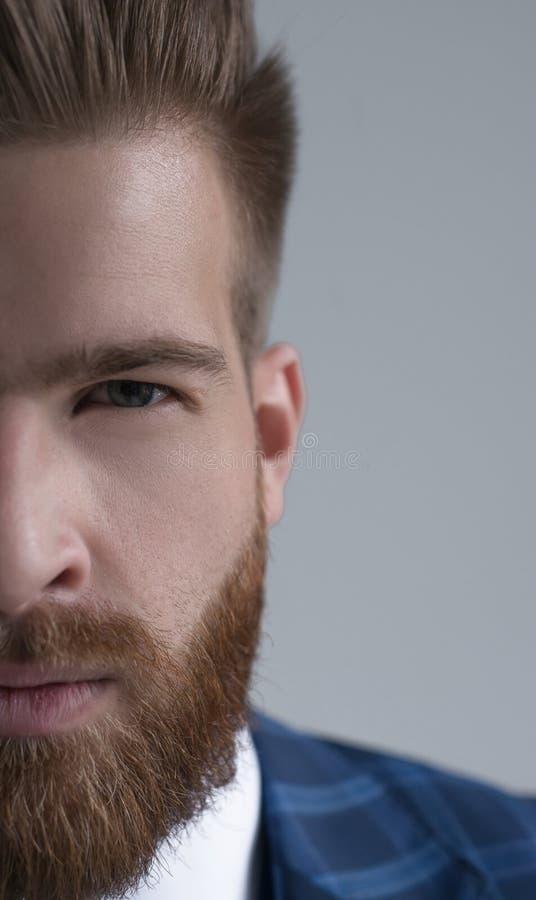 Medio retrato del hombre de negocios barbudo hermoso elegante que mira la cámara aislada en gris imágenes de archivo libres de regalías