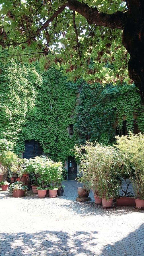 Mediolański tajny miejsca centro incisione fotografia stock