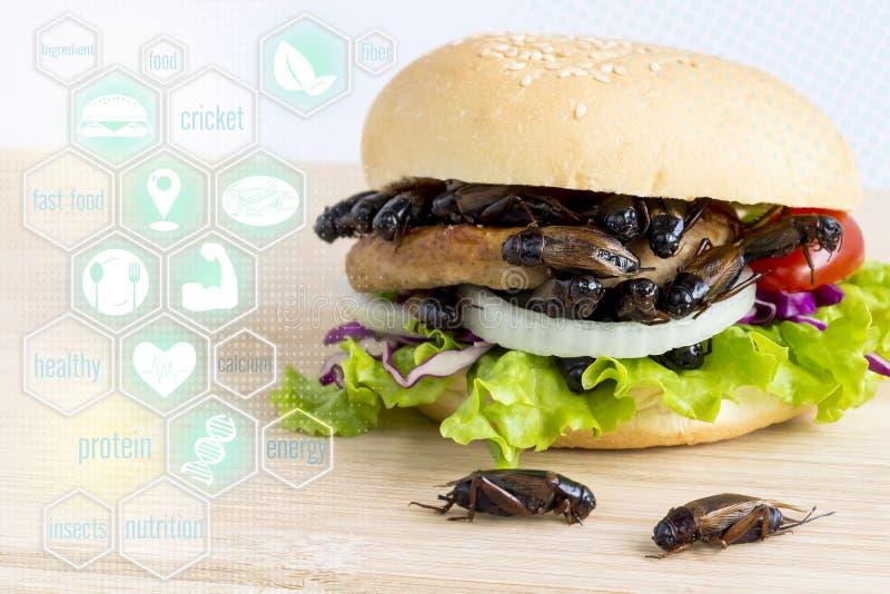 Medios nutrición de los iconos del insecto de los grillos para comer como alimentos en hamburguesa del pan con la verdura en la t fotos de archivo libres de regalías