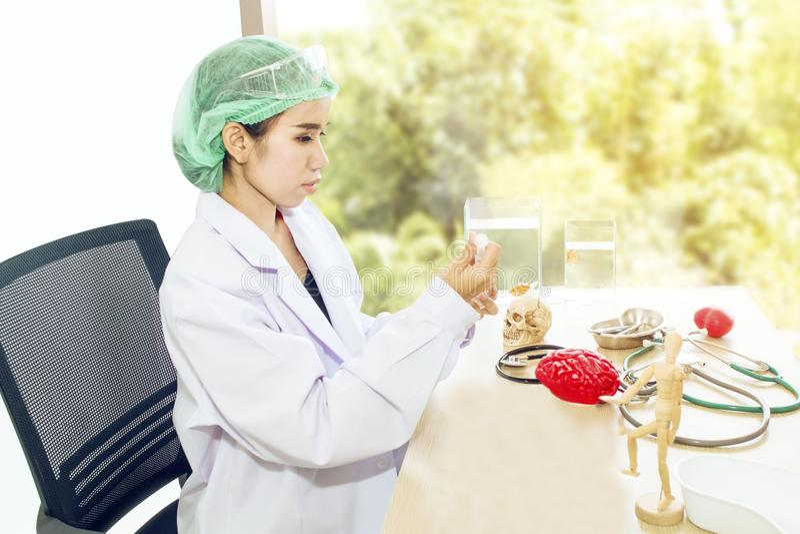 Medique a mulher que trabalha com modelo, lupa e peixes do crânio foto de stock
