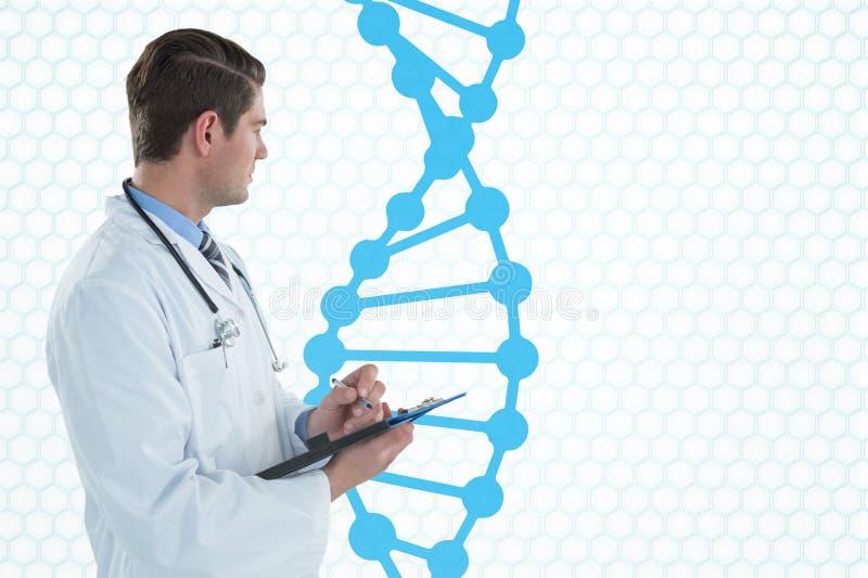 Medique o homem que guarda um dobrador com costa do ADN imagem de stock royalty free