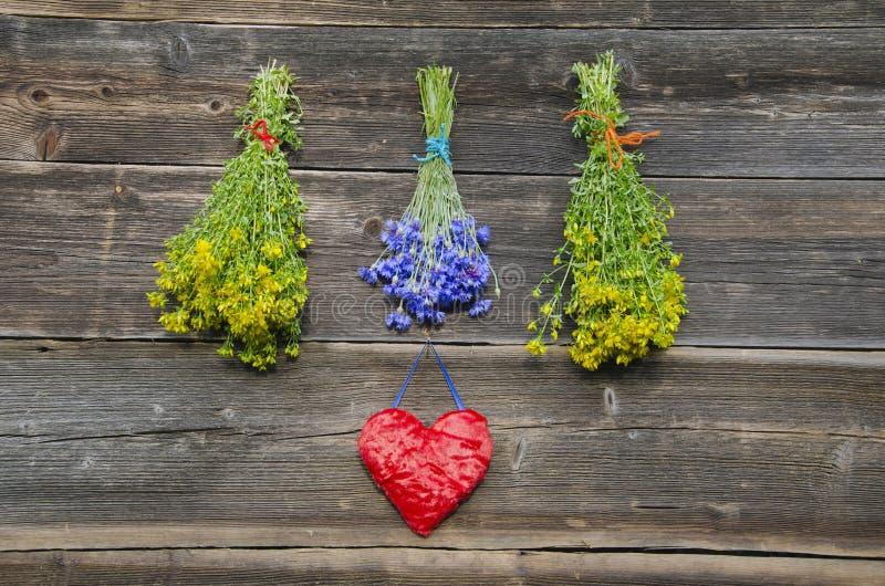 Medisch kruidenbossen en hartsymbool op oude muur royalty-vrije stock fotografie