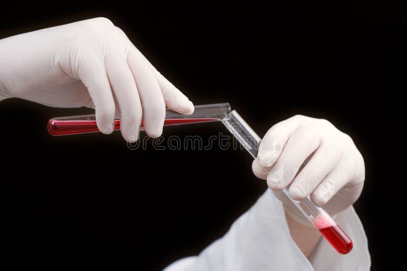Medische arbeider die bloedsteekproeven onderzoekt royalty-vrije stock afbeelding