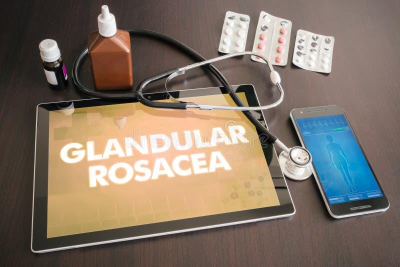 Medische concept het ingeboren van de rosacea (huidziekte) diagnose stock afbeeldingen