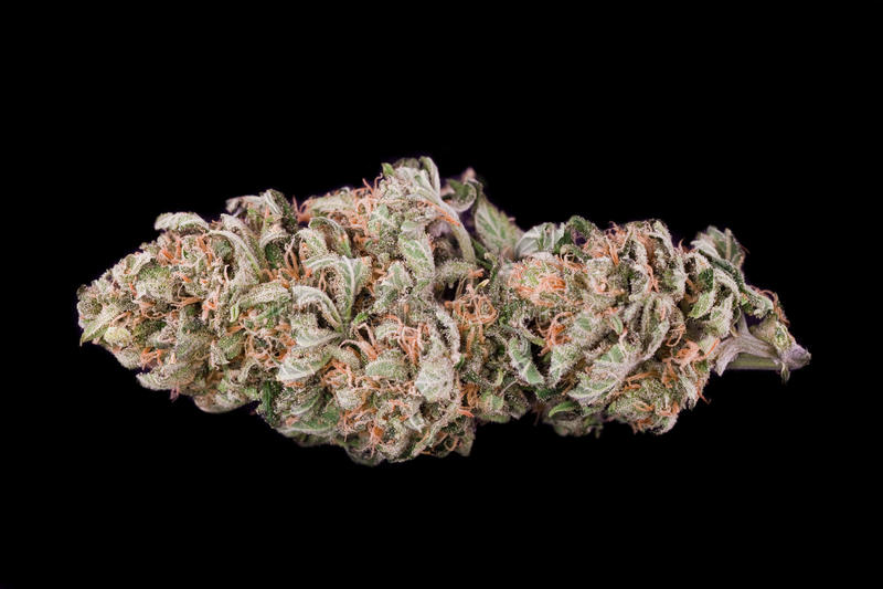 Medische marihuana royalty-vrije stock foto's
