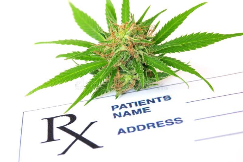 Medische marihuana en knoeiboelolie met voorschriftdocument stock fotografie