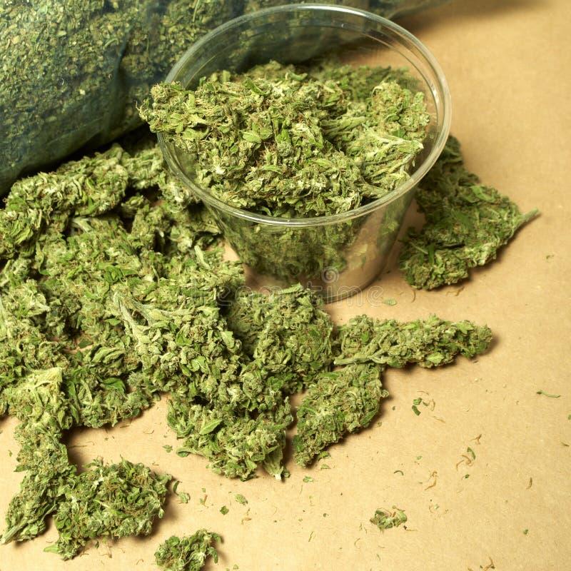 Medische Marihuana RX royalty-vrije stock afbeeldingen