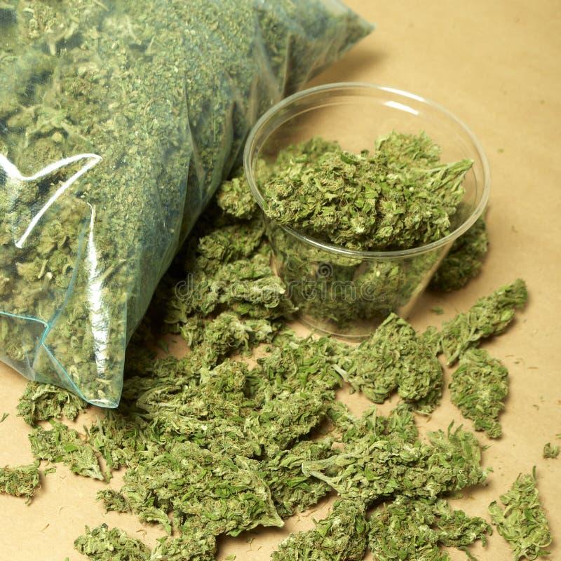 Medische Marihuana RX royalty-vrije stock afbeelding