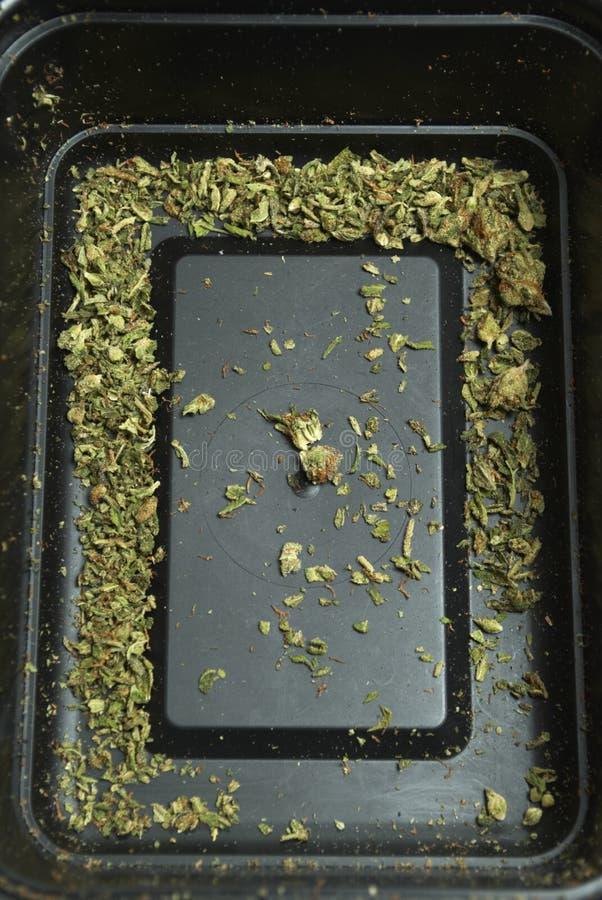 Medische Marihuanaachtergrond stock foto