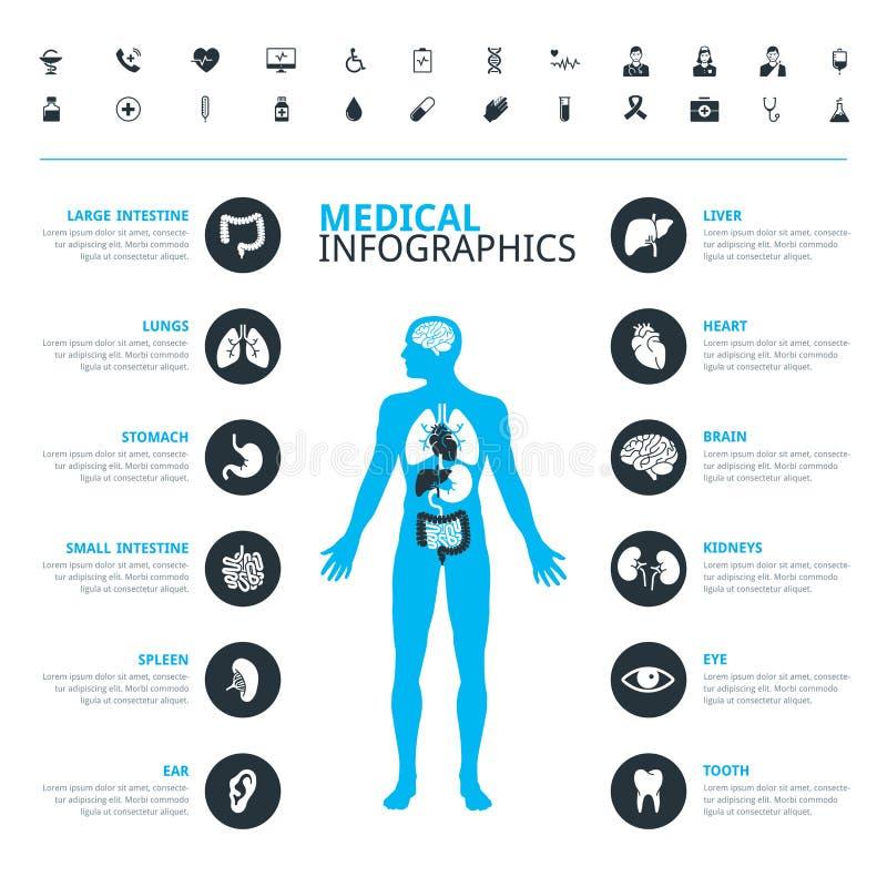 Medische menselijke organen en medisch die pictogram met menselijk lichaam worden geplaatst stock illustratie