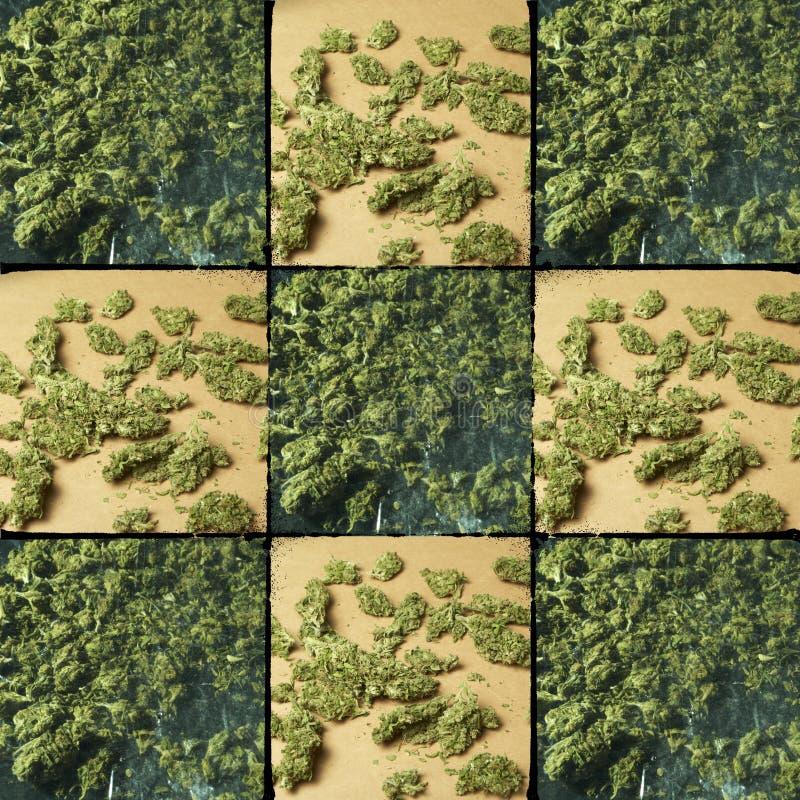 Medische & Recreatieve Marihuana royalty-vrije stock afbeelding