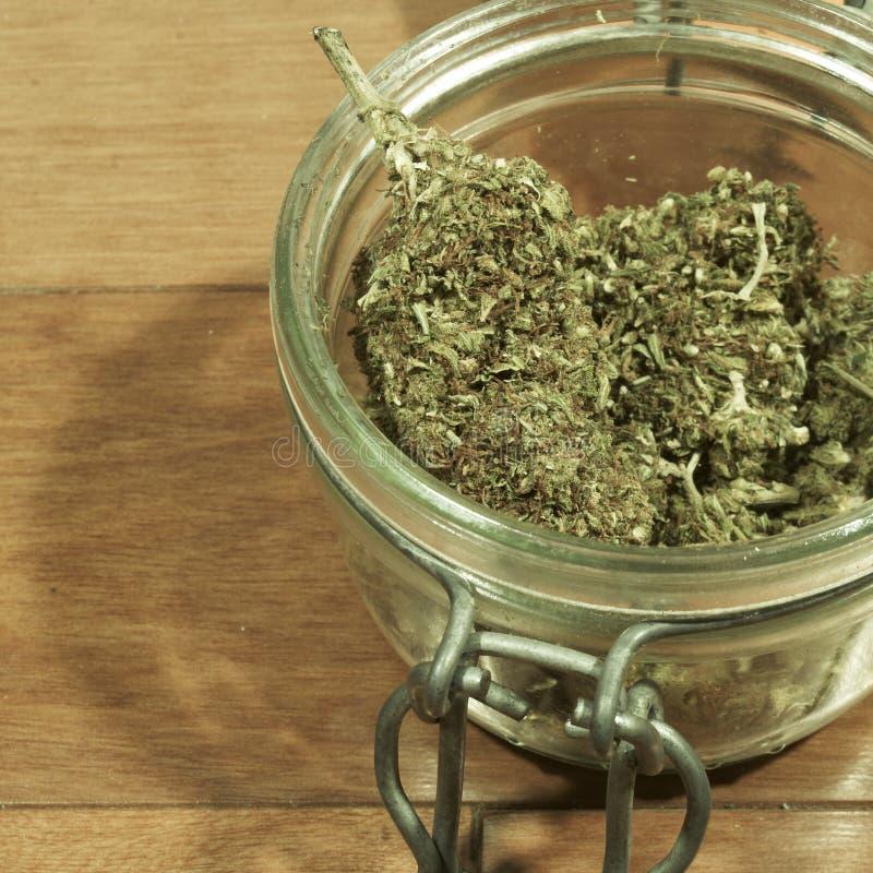 Medische & Recreatieve Marihuana royalty-vrije stock fotografie