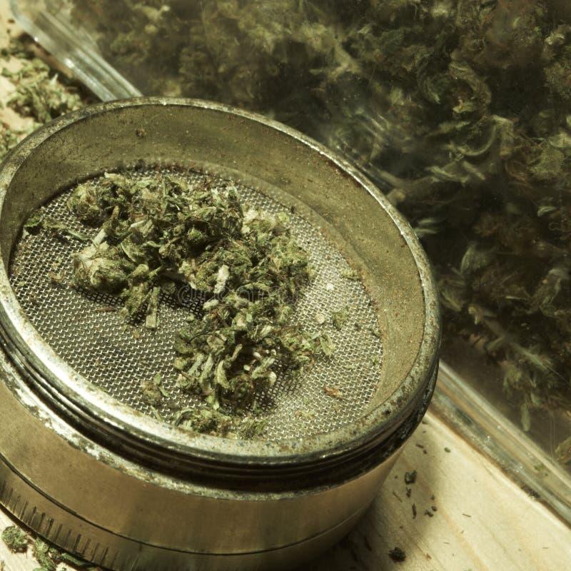 Medische & Recreatieve Marihuana royalty-vrije stock foto's