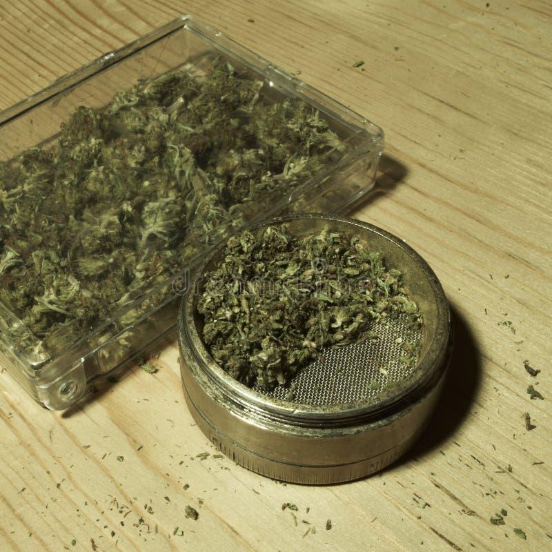 Medische & Recreatieve Marihuana stock afbeelding
